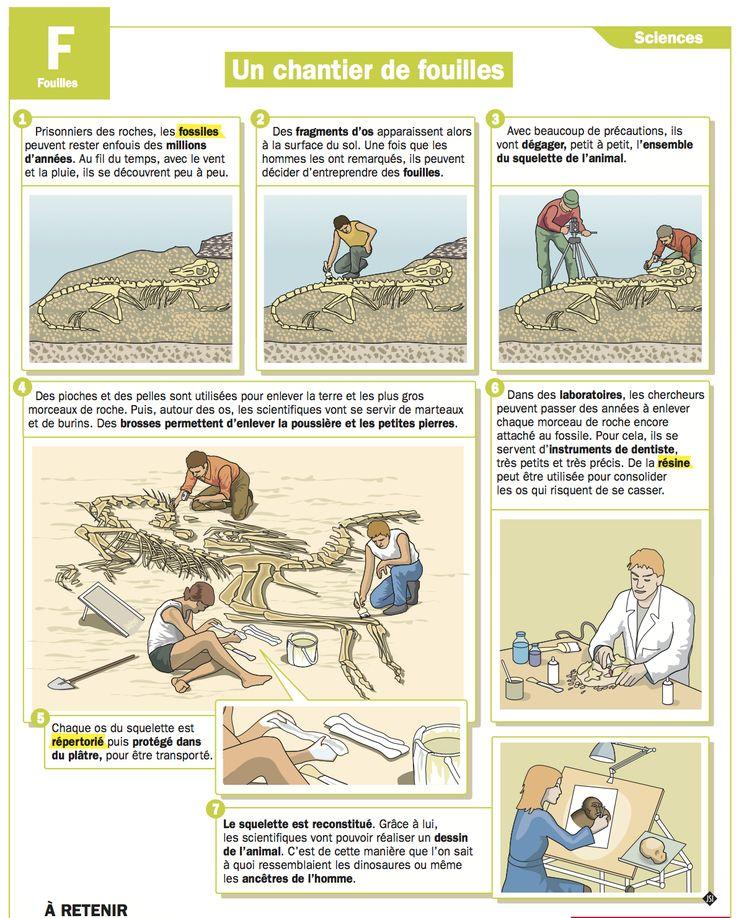 Fiche exposés : Un chantier de fouilles