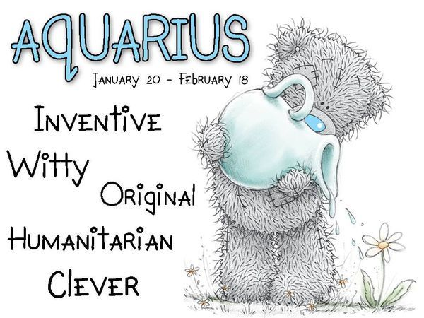 Tatty Teddy / Zodiac January 20 - February 19 / Aquarius: Inventive, witty, original, humanitarian,  clever.