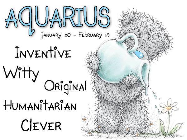 tatty teddy zodiac january 20 february 19 aquarius inventive witty original. Black Bedroom Furniture Sets. Home Design Ideas