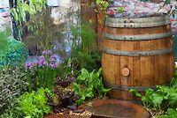 Garden Stock Photos - Images   Plant & Flower Stock Photography: GardenPhotos.com