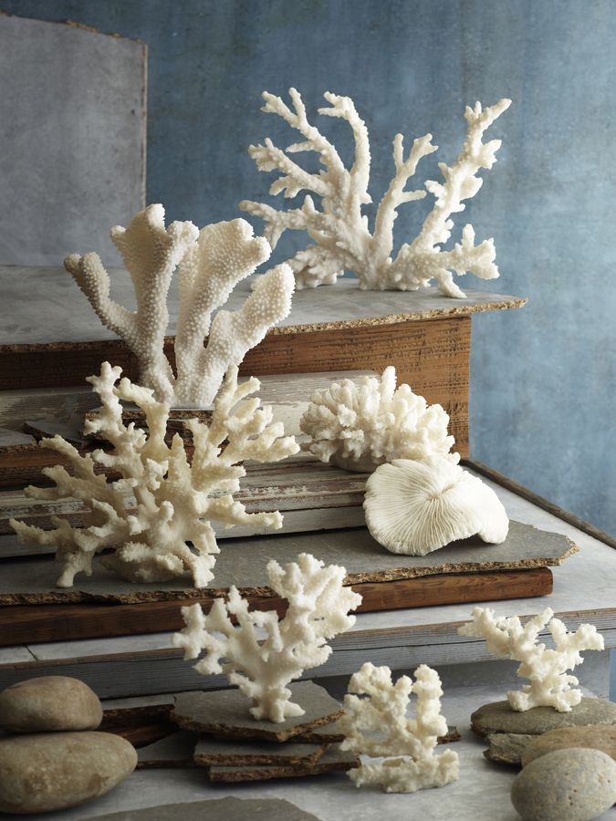 Luna coral from GDC Home Interiors in #Charleston, S.C.
