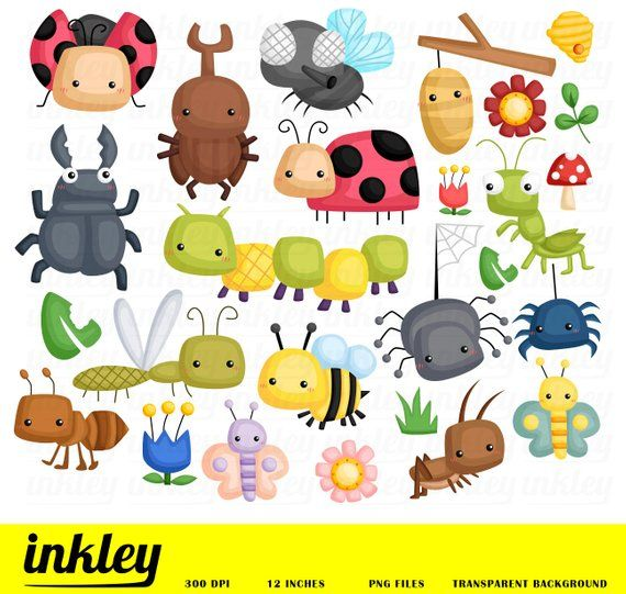 Cute Bugs Clipart Bugs Types Clip Art Bug And Insect Free Svg On Request In 2021 Cute Animal Clipart Clip Art Animal Clipart