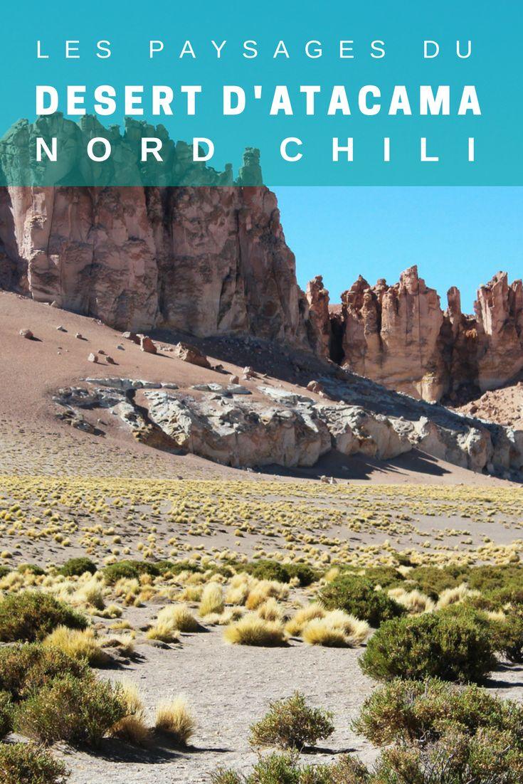 Plus de 25 id es g niales de la cat gorie chili paysage for Agence paysage nord