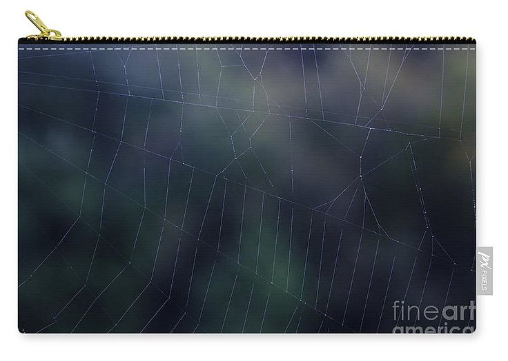 Evening Web Carry-All Pouch by Sverre Andreas Fekjan.  Our pouches are great…