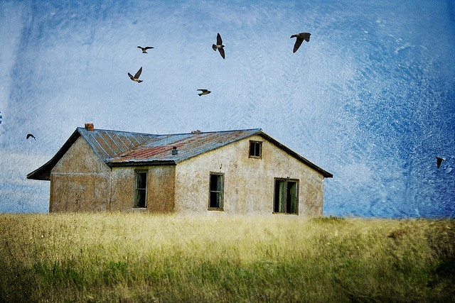 An old house near Wagon Mound, NM. Heavily messed with. :)     Love old houses