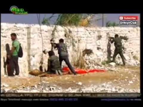 Shahin Najafi Kobani | شاهین نجفی کوبانی - YouTube