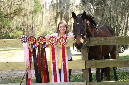 """2017 Honorable Mention: Pictured are Rebekah Day and """"Tres Chic"""", """"a.k.a Schie"""", a 15 year old female anglo-arab. The rosettes in this picture are year-end awards from the second year of showing at Horse Shows in the Park."""