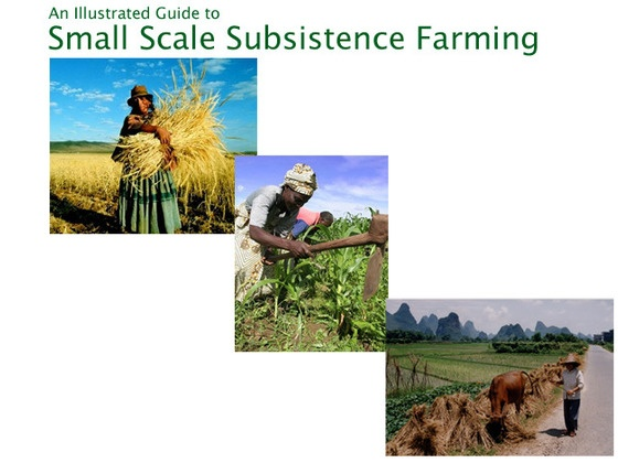 An illustrated guide to small scale subsistence farming by for Small scale homesteading