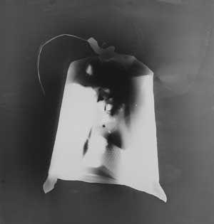 """Thomas Bachler: Gelbe Säcke (Fotogramm) Als Trittbrettfahrer in einem absurden System wurden """"gelbe Säcke"""" eingesammelt, um sie im Fotolabor zu durchleuchten. Nach getaner Arbeit kamen sie wieder raus auf die Straße."""