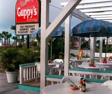 Guppy's on the Beach - Indian Rocks Beach - a little pricier, but awesome seafood.  They have a kid's menu and vegetarian options.