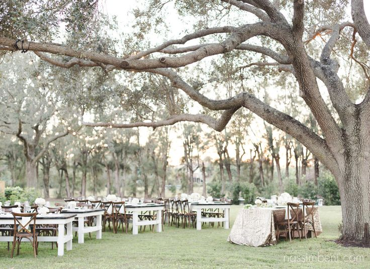Bellewood Plantation in Vero Beach Florida by Nassimbeni Photography