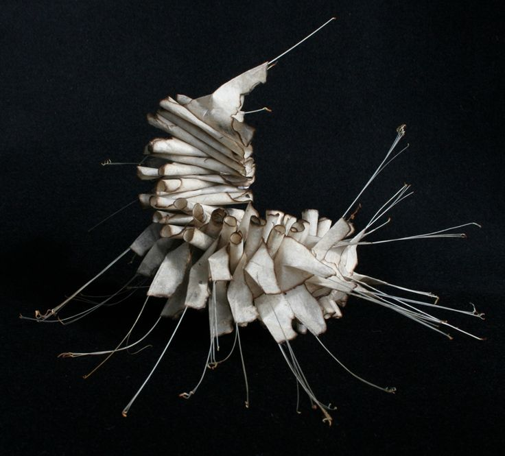"Ann Goddard, ""Endangered 1"", lokta paper, bristles, wire (20x13x15cm). Part of a series representing the millions of small life forms as yet unknown and in danger of becoming extinct through habitat loss."