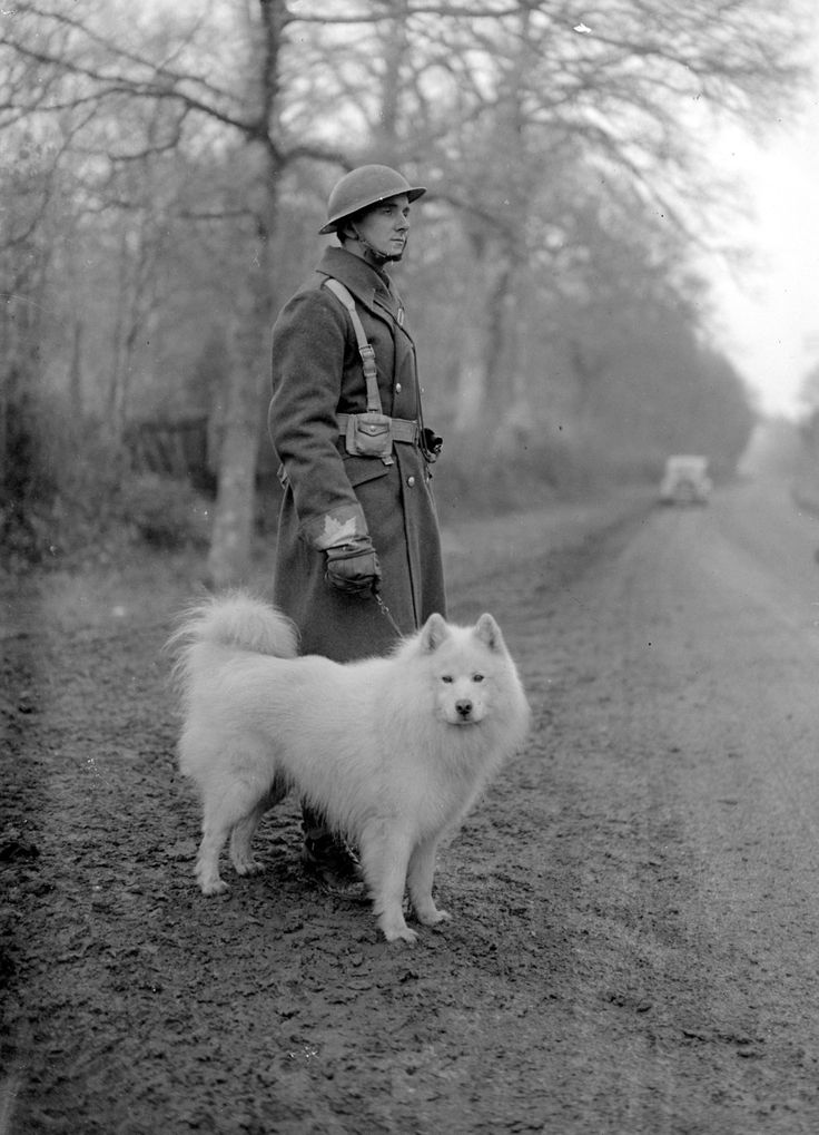 Oleg of the Glacier ; Oleg of the Glacier, a Samoyed, on a patrol with one of the Canadian soldiers who had adopted him as a mascot. (1941)