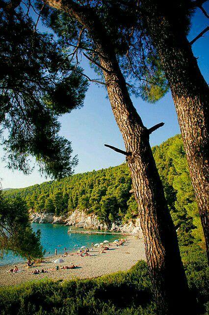 Kastani beach, green and blue, Skopelos Island
