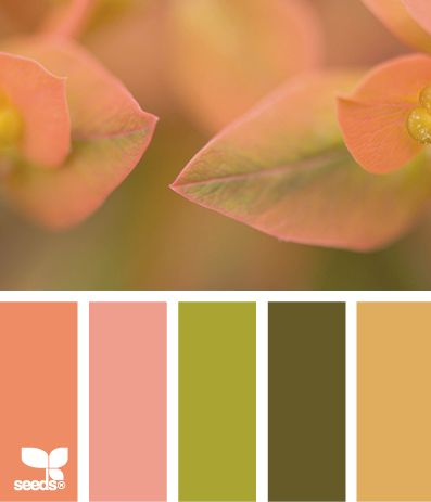 75 Best Color From Life Images On Pinterest Berry Board