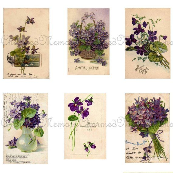 """""""Vintage Violets Postcard Collage"""" My foot tattoo will include violets and I need an idea  of what exactly I want"""