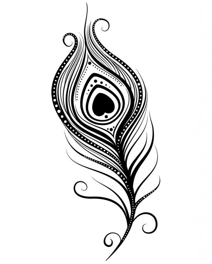 Http Getdrawings Com Native American Feather Drawing Peacock Feather Tattoo Feather Drawing