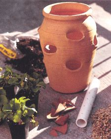 I planted pansies in my strawberry jar - beautiful for the cold weather on a porch or deck!