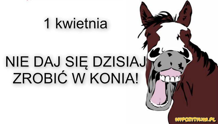 http://mypozytywni.pl/obrazek/16965,1_kwietnia