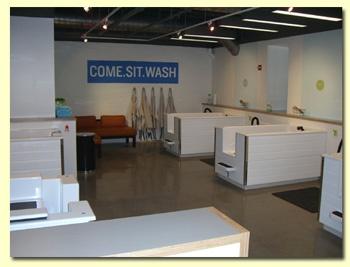 Best 51 grooming shop images on pinterest dog boarding kennels diy dog wash solutioingenieria Choice Image