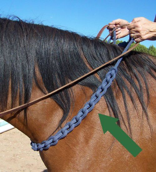Training aid for bridless riding....Red doesn't need much training for it since he already does it but good to know for cues!