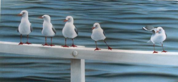 Seagulls by Maryanne Thomsen