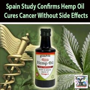Alternative Lung Cancer Treatment can be found her, this natural plant really can cure cancer.