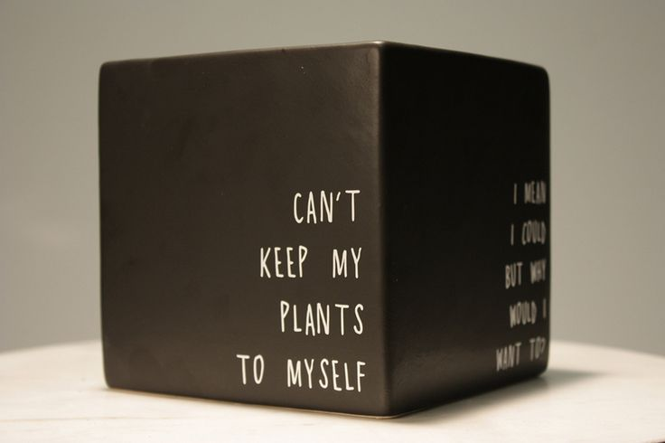 "Selena Gomez' ""Plants to Myself: Black Matte Vase by PlantPuns on Etsy"
