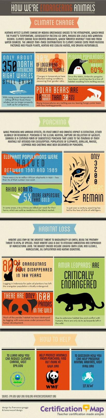 Here's an infographic on the ways animals are being endangered by human activity.