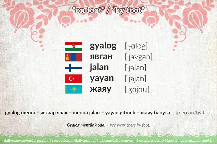 gyalog – явган – jalan – yayan – жаяу – by foot; on foot #Hungarian #Mongolian #Finnish #Turkish #Kazakh #language