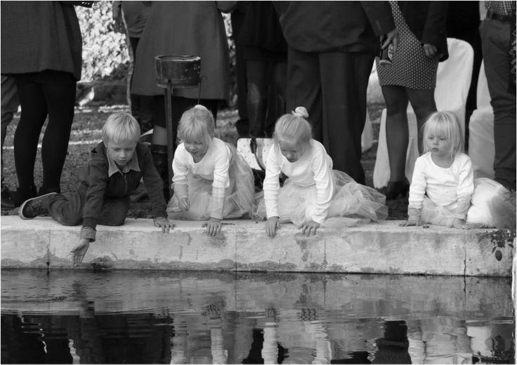 a pond side imaginarium