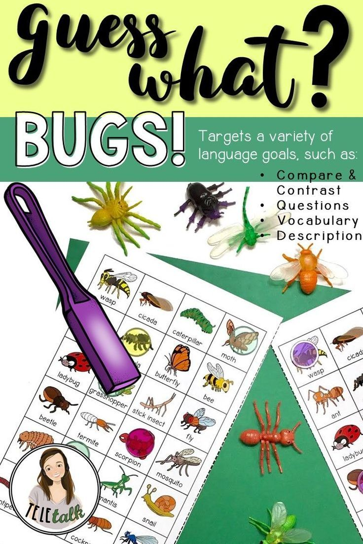 Guess What? Bugs! Game for Targeting Questions, Compare/Contrast and Vocab