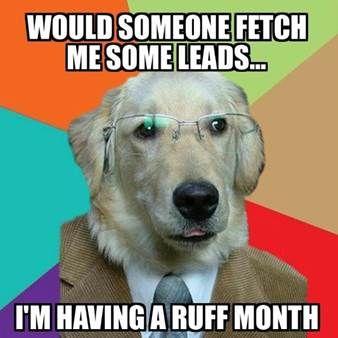 Help! #recruiter #recruitment #sales #meme