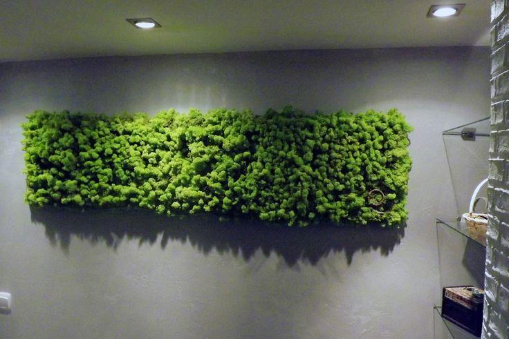 Moosbild 154 x 36 cm Natur Island Moos GreenAlleys  sehen Sie mehr auf: www.greenalleys.pl