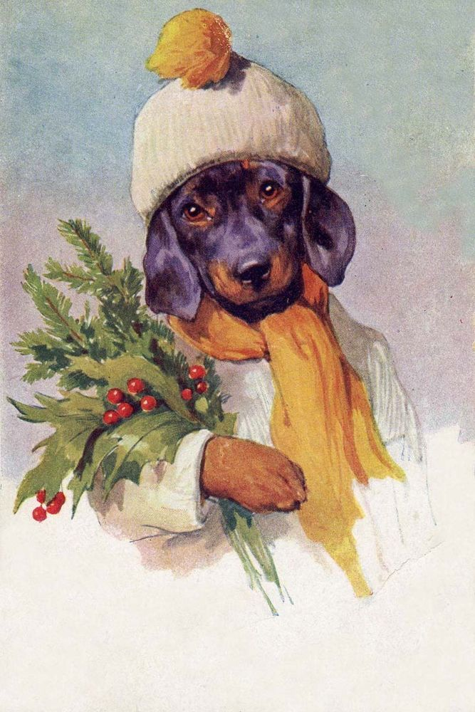 Dachshund with Mistletoe -- vintage Christmas Card, postmarked 1915; artist Carl Reichert.