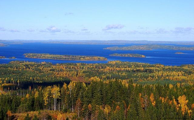 Koli - Finland #Sarjaton