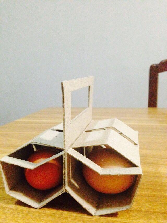 Carton de huevo diseño propio para materia de empaque