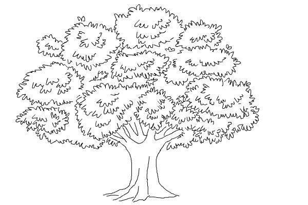 Une Fois Qu 39 On Lui A Demande De Dessiner Un Arbre Quand Ce Psychotest Il Dessine Des Arbres Et Teste Drawings Tree Drawing Pencil Drawings Of Nature