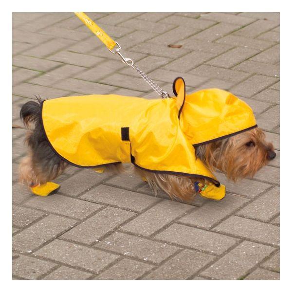 Cape imperméable chien - CHIEN, CHAT ET COMPAGNIE à partir de 10e