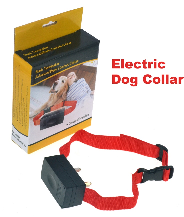 Electric Dog Collar Reviews Uk