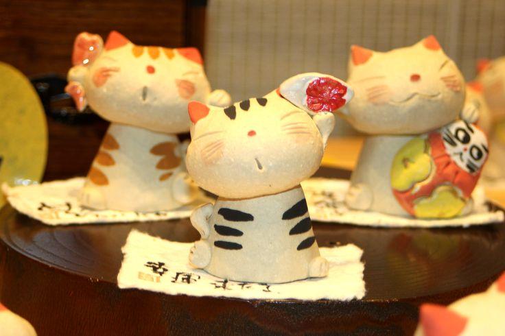 Three brothers of cat/猫の3兄弟