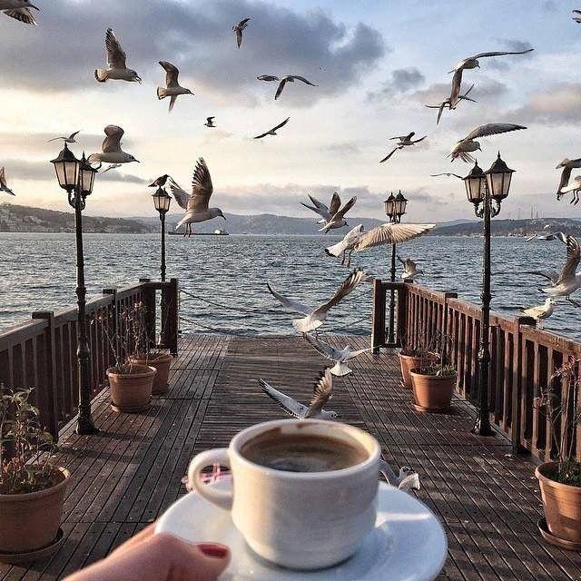 Открытки с добрым утром море и кофе, картинки для