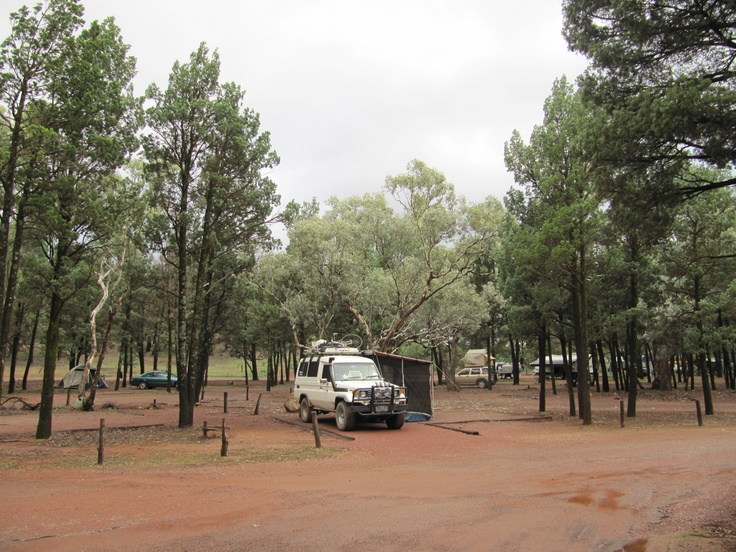 Wilpena Pound Campground, Flinders Ranges National Park, South Australia