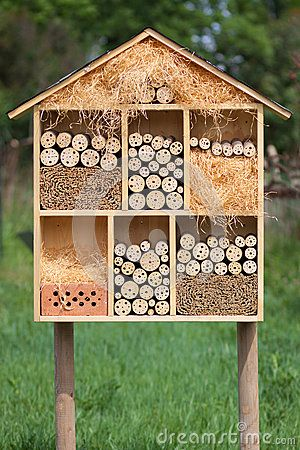 Insect Hotel by Mdworschak, via Dreamstime