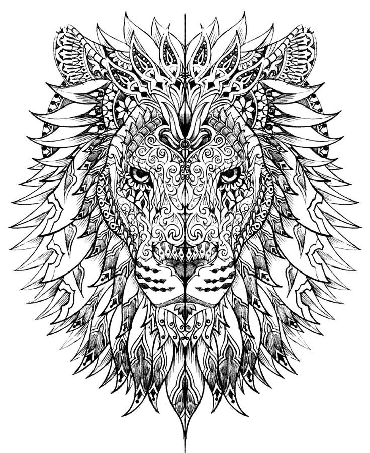 Free coloring page coloring-adult-difficult-lion-head. Lion head drawn with very smart and harmonious patterns