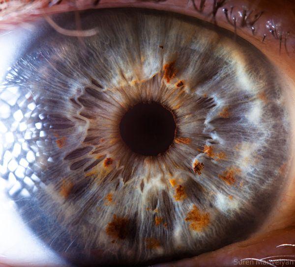 """""""Your Beautiful Eyes""""... Amazing extreme close up photographs of human eyes."""
