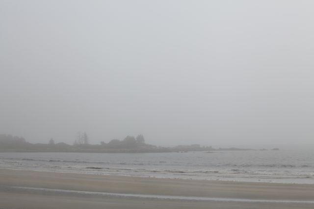 Atlantic fog 4