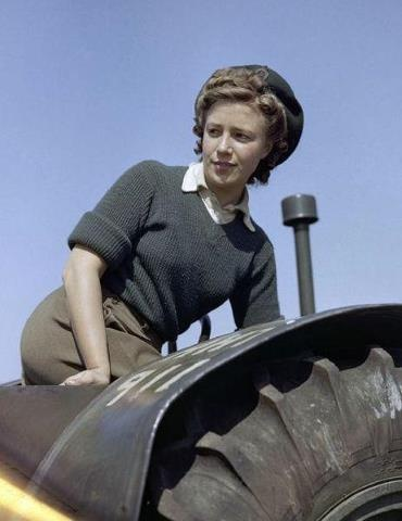 British Womens Land Army (WLA) member on tractor ~