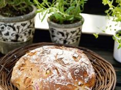 Rabarberbröd med rosmarin ............ 2 tsksalt 2 mskströsocker 2 mskrapsolja 5 dlvatten, ljummet 4 dlvetemjöl 50 gjäst 1 krukarosmarin 7-8 dlvetemjöl special 3 strabarberstjälkar, (250 g) 2 dlrågmjöl, fint
