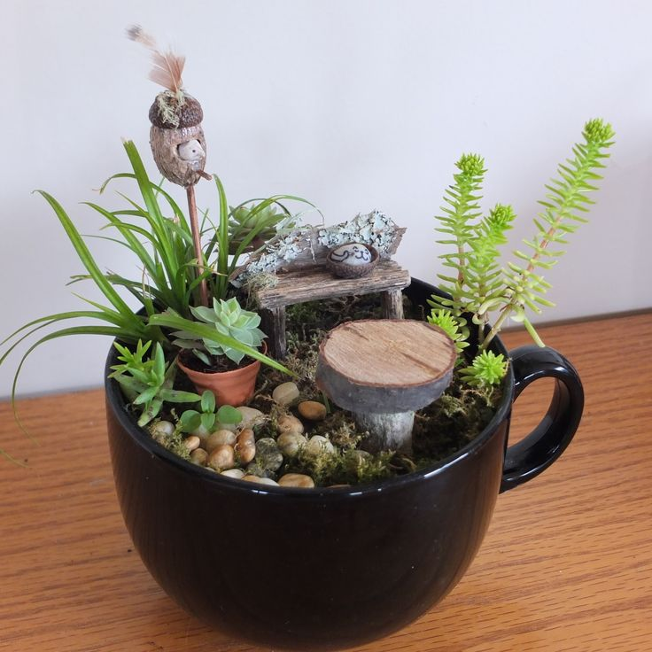 If you would like to follow me on Facebook and see regularly updated photos, ideas and inspiration for miniature and fairy gardens, here's ...